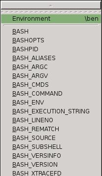 VIM-plug-in bash-support vim (Bash IDE) : Screen Shots